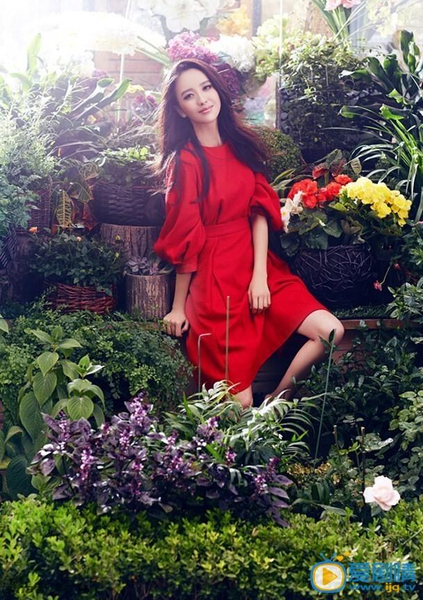 佟丽娅高清写真照片